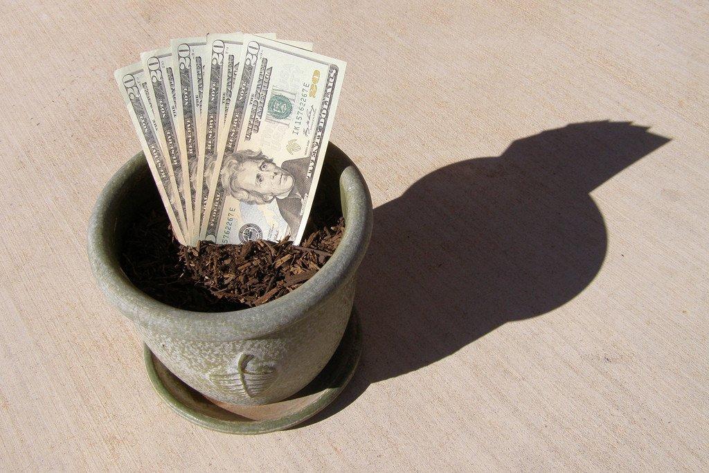Maceta con tierra y billetes de dólares creciendo