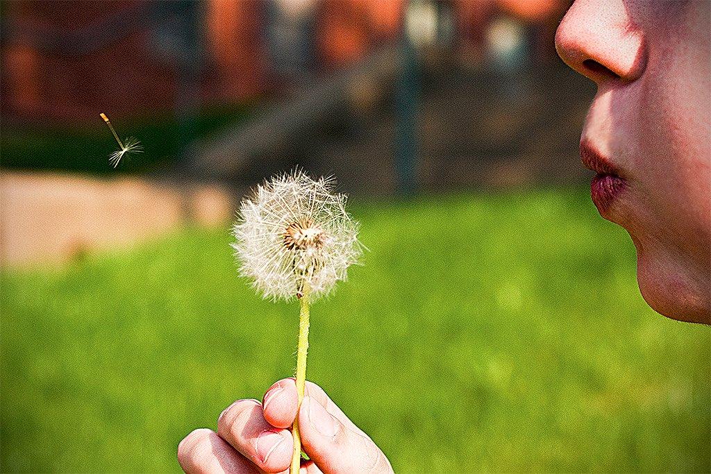 Pidiendo un deseo